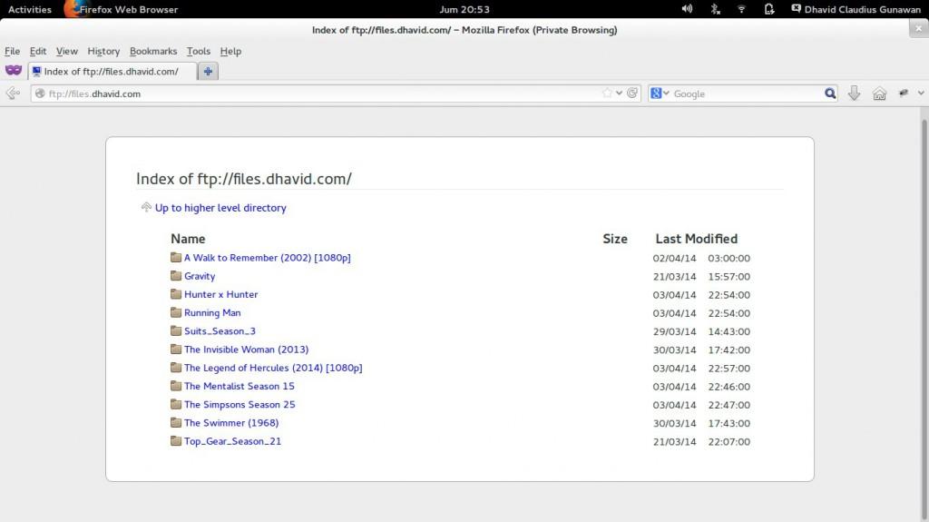 ftp files.dhavid.com